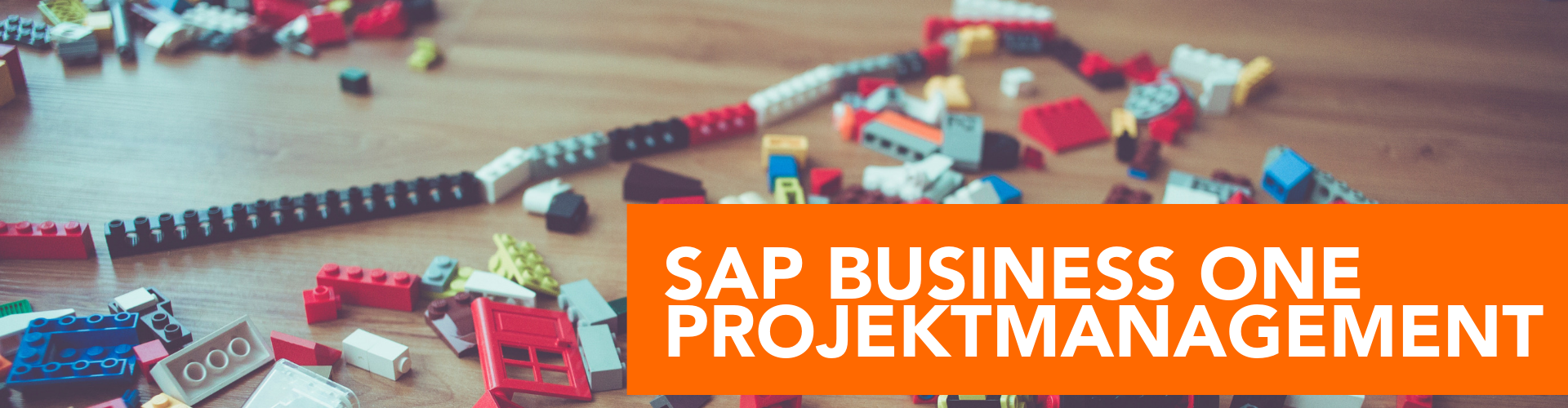 SAP Business One Projektmanagement