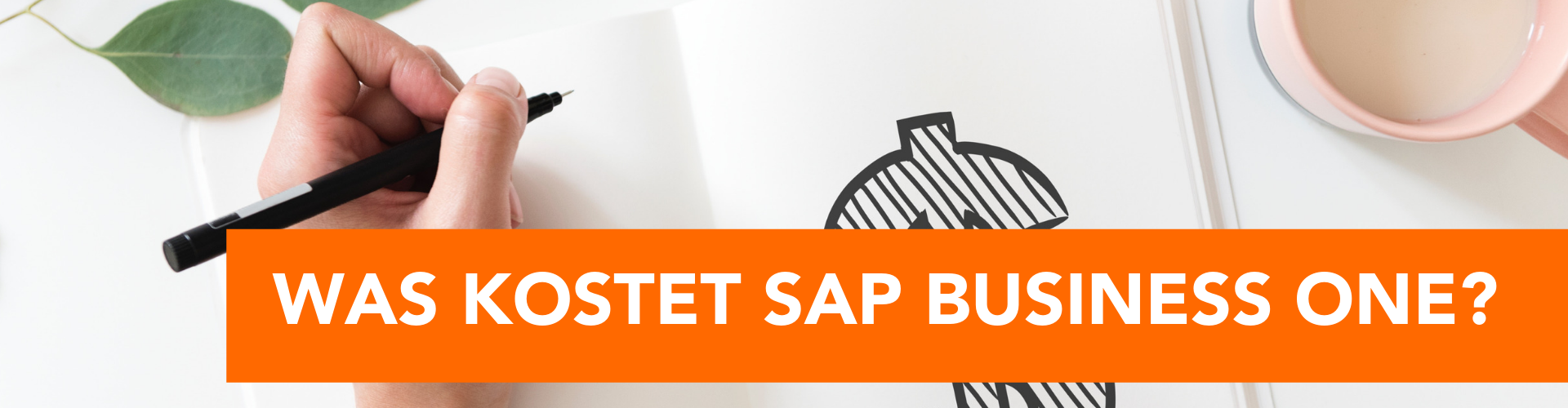 Wie teuer ist SAP Business One?