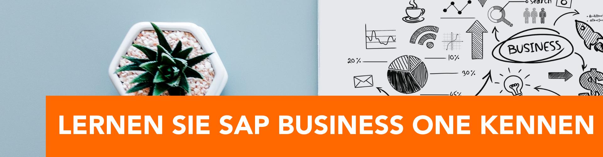 SAP-Business-One-Livepräsentation-Hamburg